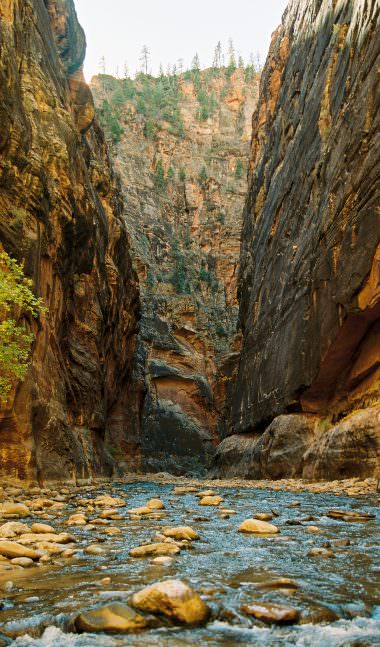 zion-national-park-photographer